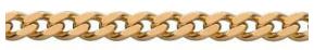Panser Chain 1