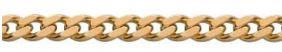 panser-chain
